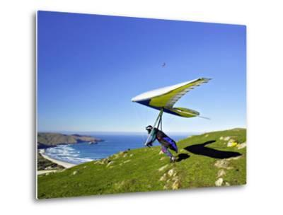 Hang Glider, Otago Peninsula, near Dunedin, South Island, New Zealand-David Wall-Metal Print