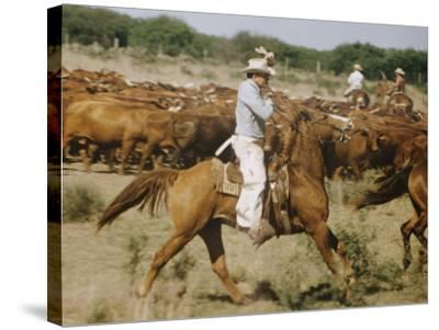 Cowboys on the King Range, TX-Eliot Elisofon-Stretched Canvas Print