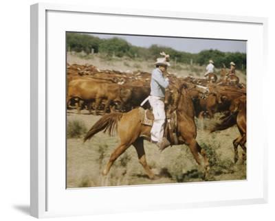 Cowboys on the King Range, TX-Eliot Elisofon-Framed Photographic Print