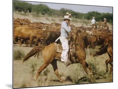 Cowboys on the King Range, TX-Eliot Elisofon-Mounted Photographic Print