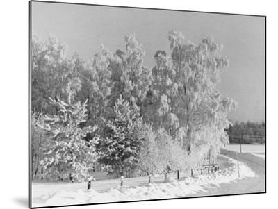 Snow Covering Countryside Northeast of Lake Ladoga-Carl Mydans-Mounted Photographic Print
