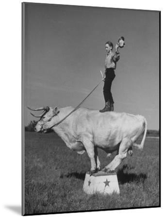Boy Standing on Shorthorn Bull at White Horse Ranch-William C^ Shrout-Mounted Photographic Print