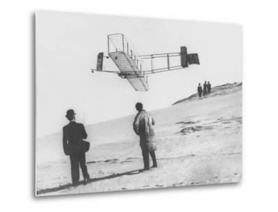 Early Glider--Metal Print