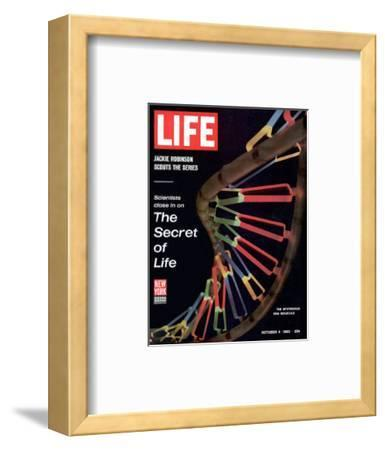 Partial DNA Helix Model, Advances in Gene Research, October 4, 1963-Fritz Goro-Framed Premium Photographic Print
