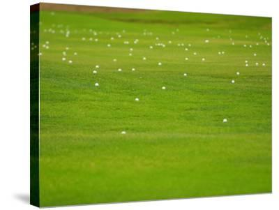 Bright and Vibrant Green Grassy Field--Stretched Canvas Print