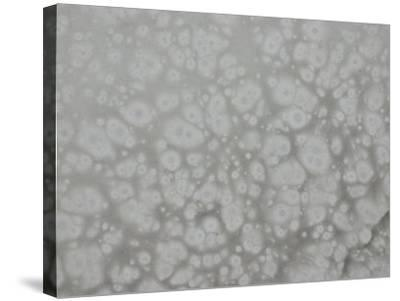 Abstract Background Pattern in Gray--Stretched Canvas Print
