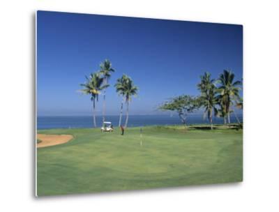 Denarau Golf Course, Danarau, Viti Levu, Fiji-Neil Farrin-Metal Print