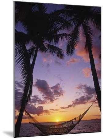 Hammock on Beach, Danarau, Viti Levu, Fiji-Neil Farrin-Mounted Photographic Print