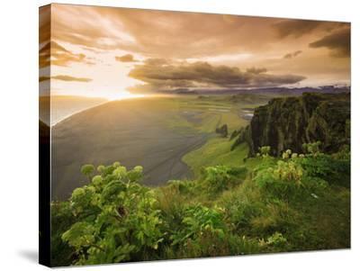 Black Sand Beach, Dyrholaey, South Coast, Iceland-Michele Falzone-Stretched Canvas Print