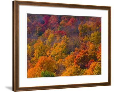 White Mountain National Park, New Hampshire, USA-Alan Copson-Framed Photographic Print