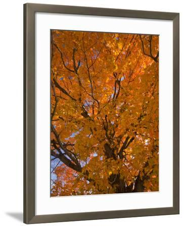 Gorham, New Hampshire, USA-Alan Copson-Framed Photographic Print