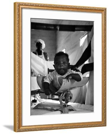 Nurse-Midwife Maude Callen Weighing Baby on Scale-W^ Eugene Smith-Framed Photographic Print