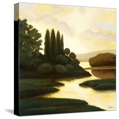 Serenity II-Mary Calkins-Stretched Canvas Print