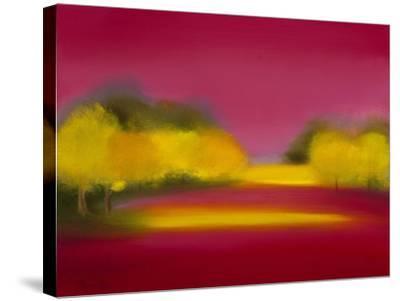 Raspberry Fantasy-Bonita Williams Goldberg-Stretched Canvas Print