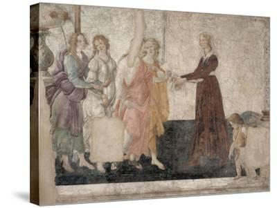 Vénus et les Grâces offrant des présents à une jeune fille-Sandro Botticelli-Stretched Canvas Print