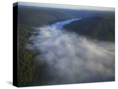 Mist Rises from the Gorge of Lost Cove, Lost Cove, Sewanee, Tennessee, USA-Stephen Alvarez-Stretched Canvas Print
