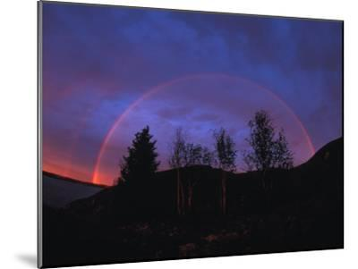 Rainbow over Trees, Northwest Territories, Canada-Nick Norman-Mounted Photographic Print