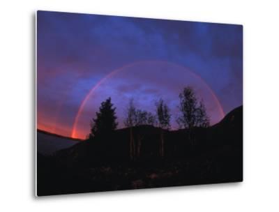 Rainbow over Trees, Northwest Territories, Canada-Nick Norman-Metal Print