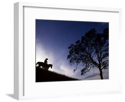 Silhouette of Cowboy, Picabo, Idaho-Kate Thompson-Framed Photographic Print