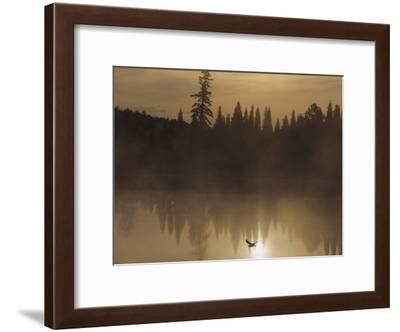 A Bird Flies Low over Fog-Shrouded Lake Superior-Medford Taylor-Framed Photographic Print