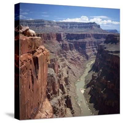Deep Gorge of the Colorado River on the West Rim of the Grand Canyon, Arizona, USA-Tony Gervis-Stretched Canvas Print
