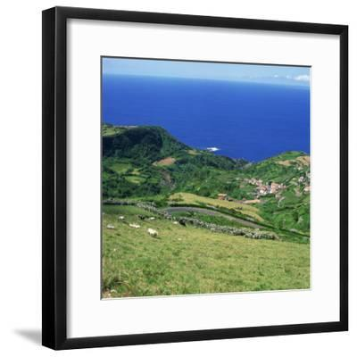 Cattle, Fields and Small Village on the Island of Flores in the Azores, Portugal, Atlantic, Europe-David Lomax-Framed Photographic Print