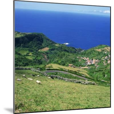 Cattle, Fields and Small Village on the Island of Flores in the Azores, Portugal, Atlantic, Europe-David Lomax-Mounted Photographic Print