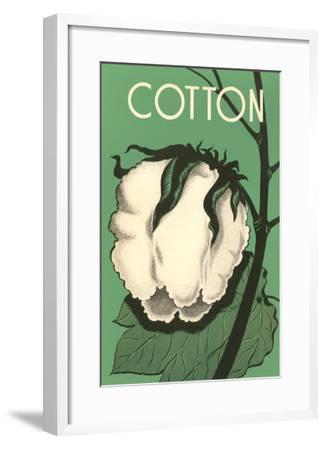 Cotton Boll--Framed Art Print