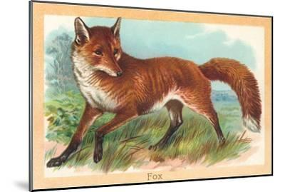Fox in the Meadow--Mounted Art Print