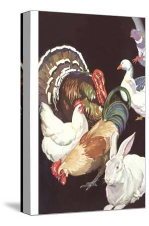 Domestic Barnyard Animals Art Print by | Art com