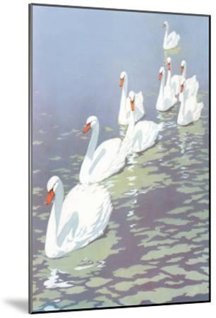 Swans in Line--Mounted Art Print