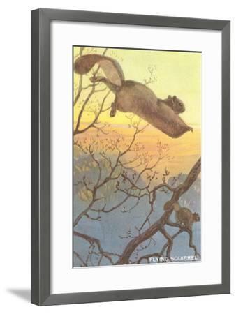 Flying Squirrel--Framed Art Print