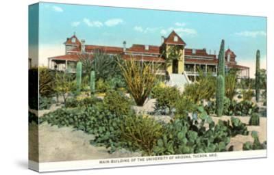 University of Arizona at Tucson, Cactus Garden--Stretched Canvas Print