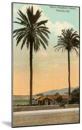 Palm Trees, Ventura--Mounted Art Print