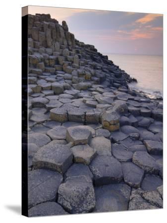 Giant's Causeway Near Bushmills, County Antrim, Ulster, Northern Ireland, UK-Neale Clarke-Stretched Canvas Print