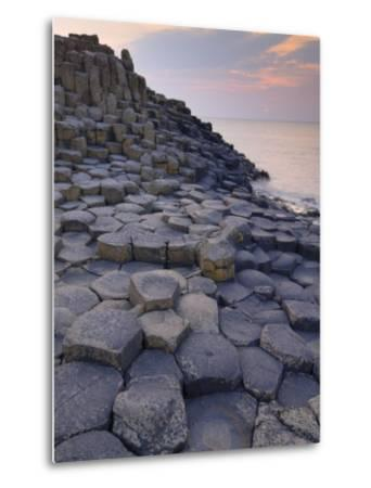 Giant's Causeway Near Bushmills, County Antrim, Ulster, Northern Ireland, UK-Neale Clarke-Metal Print