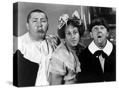 All the World's a Stooge, Curly Howard, Larry Fine, Moe Howard, 1941--Stretched Canvas Print