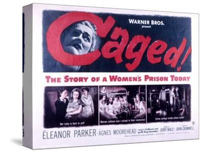 Caged, Eleanor Parker, Agnes Moorehead, Hope Emerson, 1950--Stretched Canvas Print