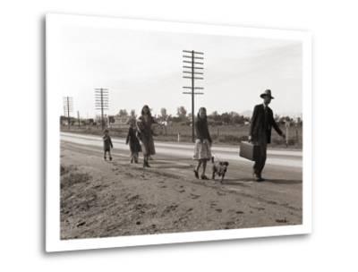 Homeless Migrant Family of Seven, Walking the Highway from Phoenix, Arizona, 1939-Dorothea Lange-Metal Print