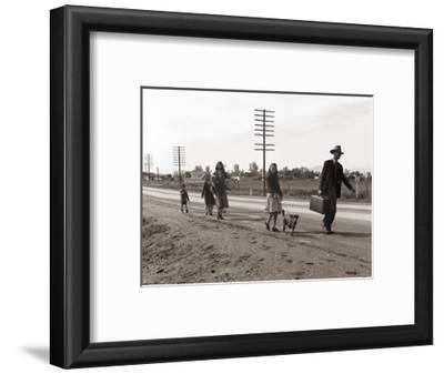 Homeless Migrant Family of Seven, Walking the Highway from Phoenix, Arizona, 1939-Dorothea Lange-Framed Photo