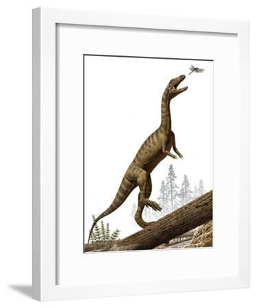 A Triassic reptile, Effigia okeeffeae, resembling a dinosaur-Raul Martin-Framed Photographic Print