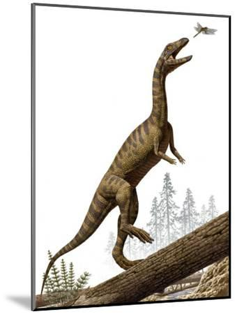A Triassic reptile, Effigia okeeffeae, resembling a dinosaur-Raul Martin-Mounted Photographic Print
