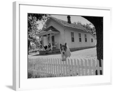 Old School House Now Inhabited by House Painter Charlie Harris-Walter Sanders-Framed Photographic Print