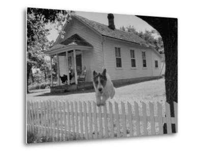 Old School House Now Inhabited by House Painter Charlie Harris-Walter Sanders-Metal Print