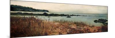 Island Shores I-Amy Melious-Mounted Premium Giclee Print