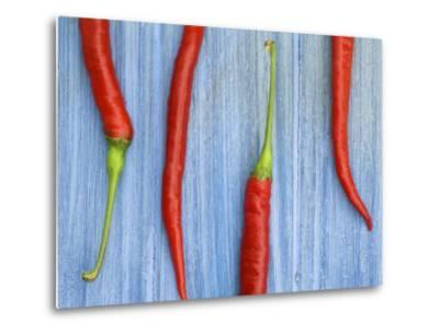 Red Chilli Peppers Chillies Freshly Harvested on Pale Blue Background-Gary Smith-Metal Print