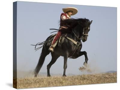 Charro on a Black Andalusian Stallion Galloping in Ojai, California, USA-Carol Walker-Stretched Canvas Print