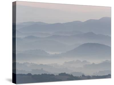 The Andalucian Campagna Near Montellano at Dawn, Andulacia, Spain, Febraury 2008-Niall Benvie-Stretched Canvas Print