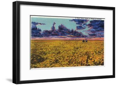 Amarillo, Texas - View of a Field of Wheat at Twilight, c.1935-Lantern Press-Framed Art Print