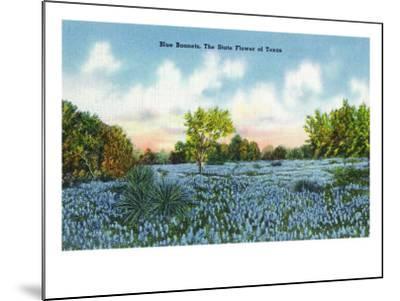 Texas - View of a Field of Blue Bonnets, c.1945-Lantern Press-Mounted Art Print